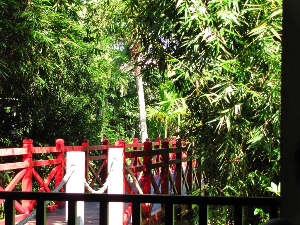 Red Bridge 2 7