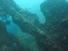 Diving at Tulamben