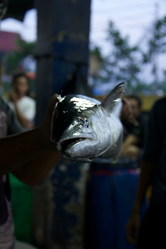Photo walk Pasar Ikan