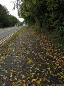 Walking in Leamington