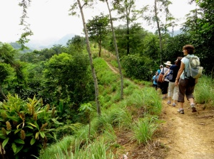 Hiking in Sentul