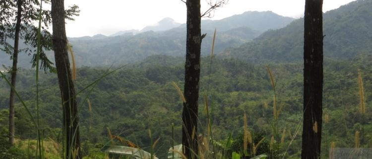 Hiking in Sentul