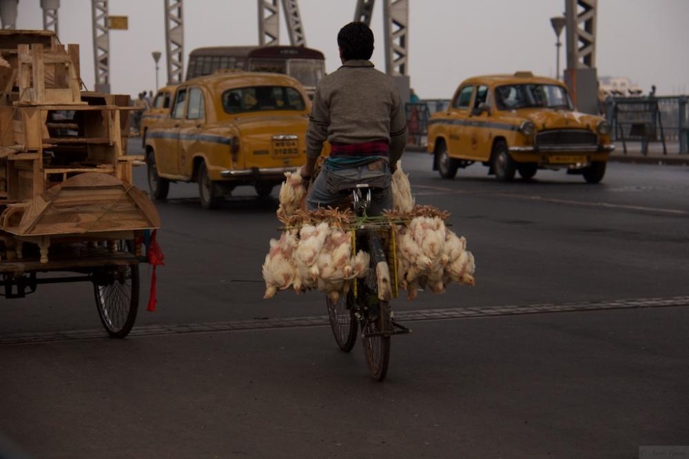 On the Streets of Kolkata - #2 (A Tale of 2 Bridges) (4/6)