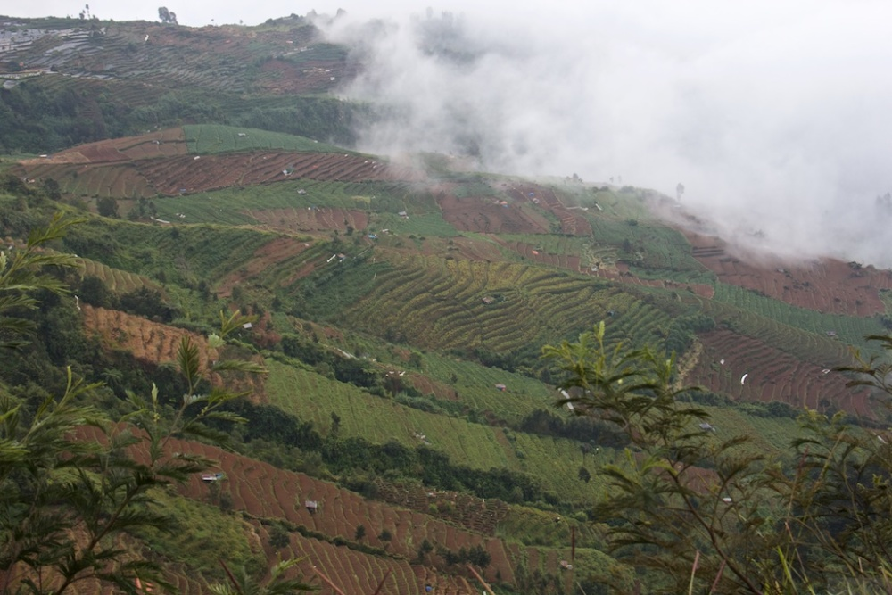 The Beauty of Dieng (6/6)