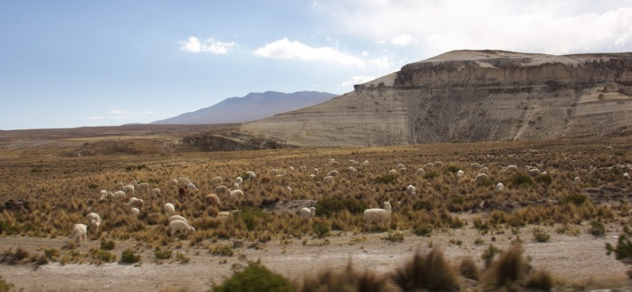 Juliaca to Arequipa