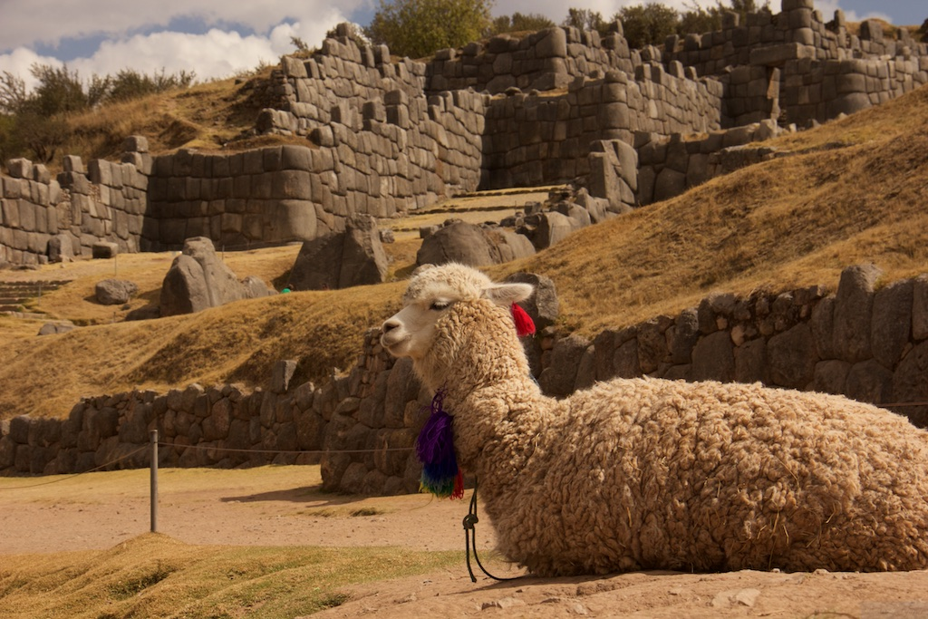 There's a lot to do in Cusco!