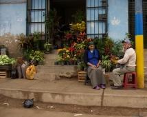 Shanty town tour
