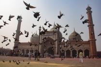 jama-masjid-22
