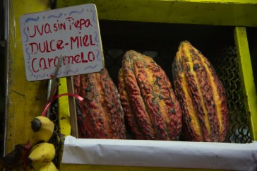 Cacao pods for sale