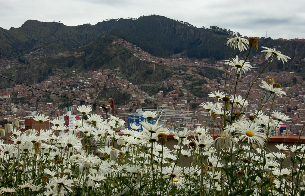A Walking Tour of LaPaz