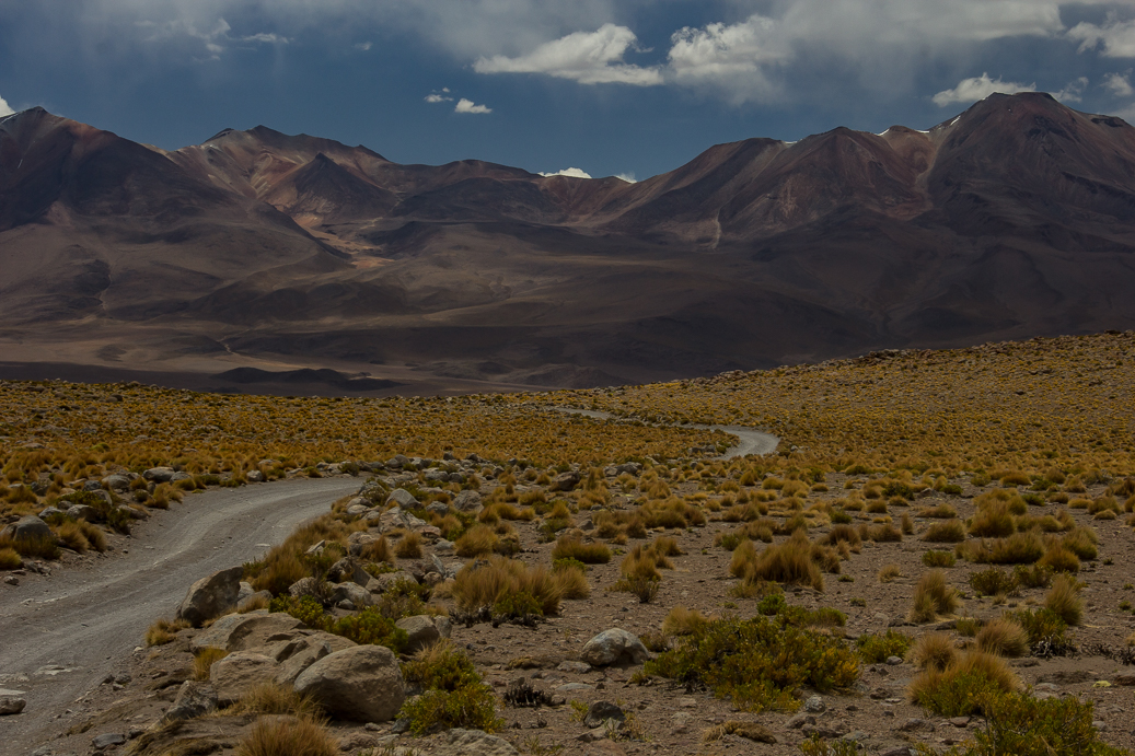 Bolivia countryside-14